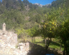 Deia, Mallorca, 4 Bedrooms Bedrooms, ,1 BathroomBathrooms,Finca,For Sale,1145